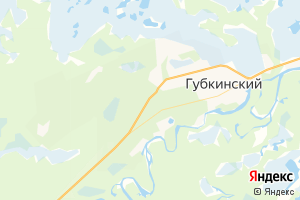Карта г. Губкинский Ямало-Ненецкий автономный округ