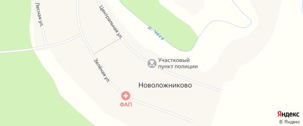 Центральная улица на карте села Новоложниково Новосибирской области с номерами домов