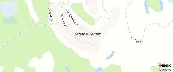 Карта села Новоложниково в Новосибирской области с улицами и номерами домов