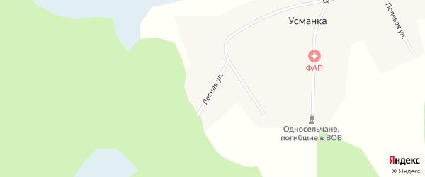 Лесная улица на карте деревни Усманки Новосибирской области с номерами домов