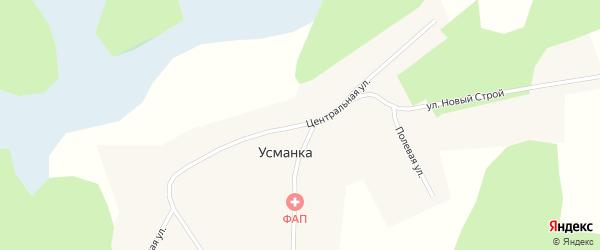 Центральная улица на карте деревни Усманки Новосибирской области с номерами домов