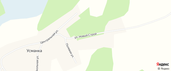 Улица Новый Строй на карте деревни Усманки Новосибирской области с номерами домов