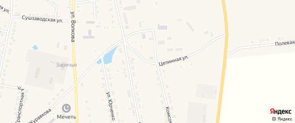 Целинная улица на карте села Кыштовки Новосибирской области с номерами домов