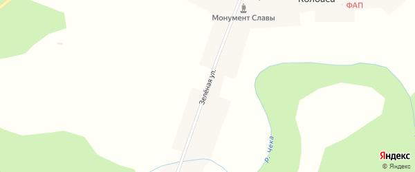 Зеленая улица на карте деревни Колбасы Новосибирской области с номерами домов