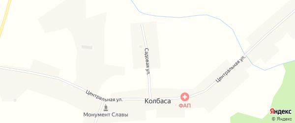 Садовая улица на карте деревни Колбасы Новосибирской области с номерами домов