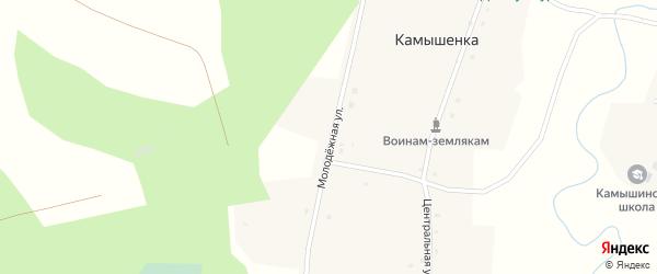 Молодежная улица на карте деревни Камышенки Новосибирской области с номерами домов