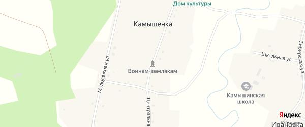 Центральная улица на карте деревни Камышенки Новосибирской области с номерами домов
