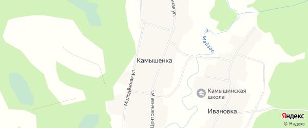 Карта деревни Камышенки в Новосибирской области с улицами и номерами домов