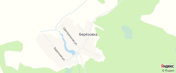 Карта села Березовки в Новосибирской области с улицами и номерами домов
