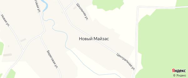 Центральная улица на карте деревни Нового Майзаса Новосибирской области с номерами домов