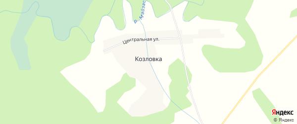 Карта деревни Козловки в Новосибирской области с улицами и номерами домов