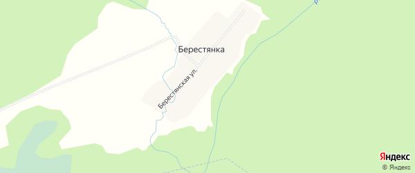 Карта деревни Берестянки в Новосибирской области с улицами и номерами домов