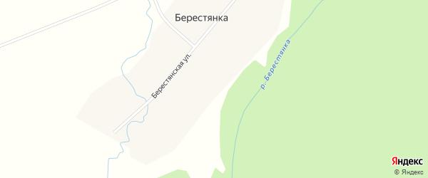 Берестянская улица на карте деревни Берестянки Новосибирской области с номерами домов