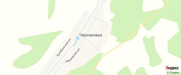Карта села Чернаковки в Новосибирской области с улицами и номерами домов