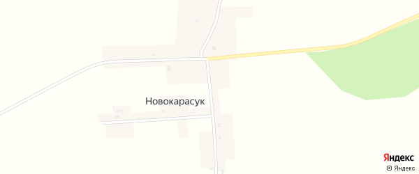 Южная улица на карте села Новокарасука Новосибирской области с номерами домов