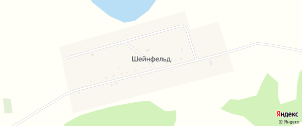 Улица Мира на карте села Шейнфельда Новосибирской области с номерами домов
