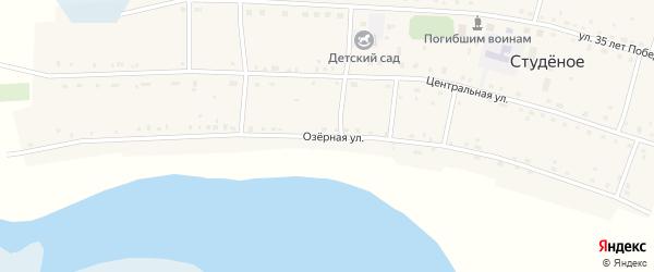 Озерная улица на карте Студеного села Новосибирской области с номерами домов
