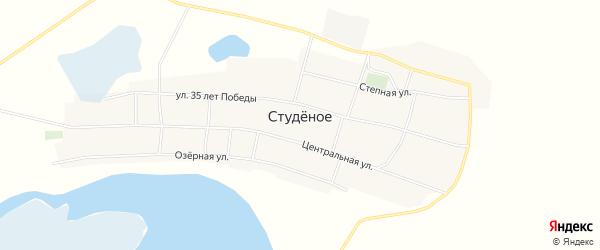 Карта Студеного села в Новосибирской области с улицами и номерами домов