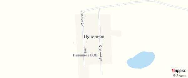 Степная улица на карте поселка Пучинного Новосибирской области с номерами домов