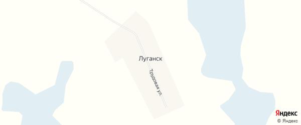 Карта села Луганска в Новосибирской области с улицами и номерами домов