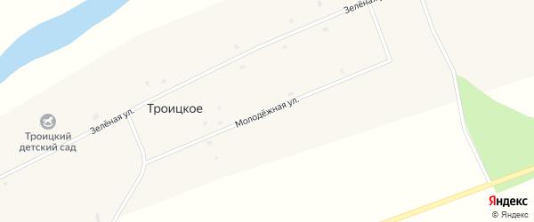 Молодежная улица на карте Троицкого села Новосибирской области с номерами домов