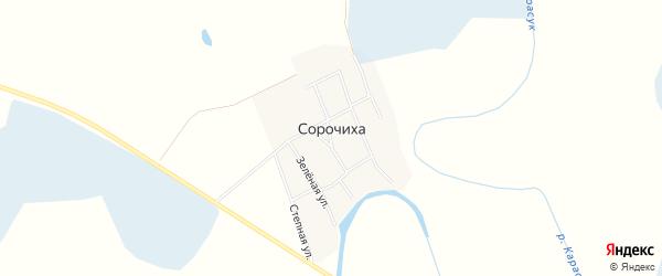 Карта села Сорочихи в Новосибирской области с улицами и номерами домов