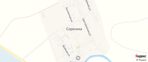 Степная улица на карте села Сорочихи Новосибирской области с номерами домов
