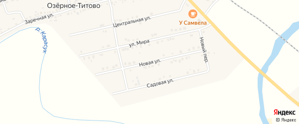 Новая улица на карте железнодорожной станции Чебачий Новосибирской области с номерами домов