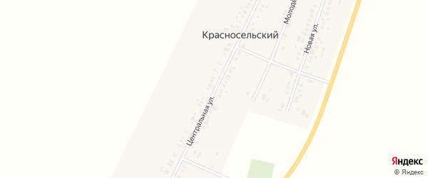 Центральная улица на карте Красносельского поселка Новосибирской области с номерами домов