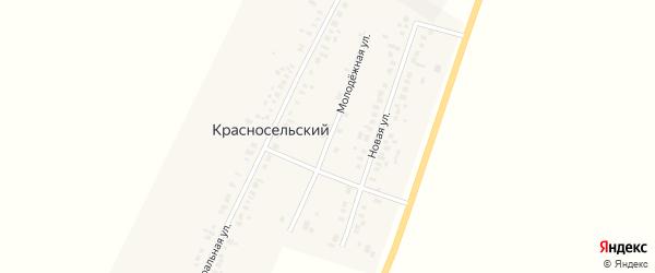 Молодёжная улица на карте Красносельского поселка Новосибирской области с номерами домов