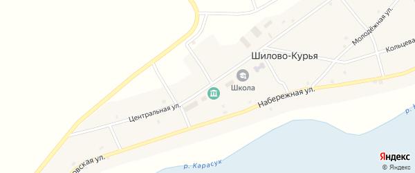 Центральная улица на карте села Шилова-Курьи Новосибирской области с номерами домов
