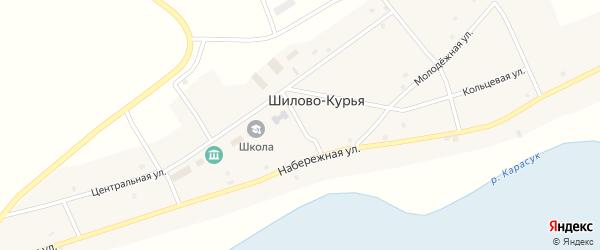 Школьная улица на карте села Шилова-Курьи Новосибирской области с номерами домов