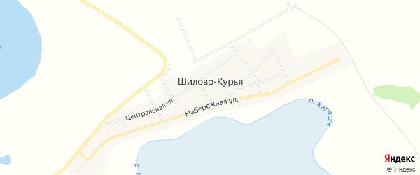 Карта села Шилова-Курьи в Новосибирской области с улицами и номерами домов