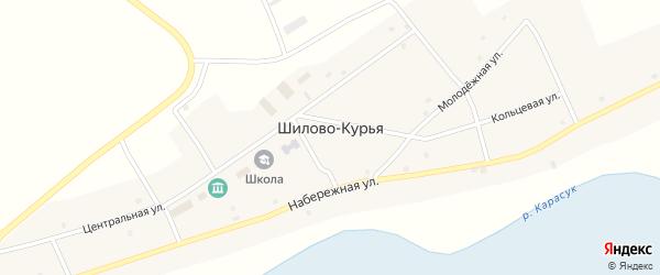 Дорожная улица на карте села Шилова-Курьи Новосибирской области с номерами домов