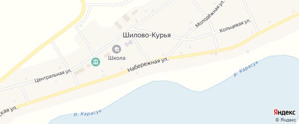 Набережная улица на карте села Шилова-Курьи Новосибирской области с номерами домов