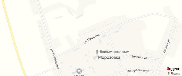 Улица Пушкина на карте села Морозовки Новосибирской области с номерами домов