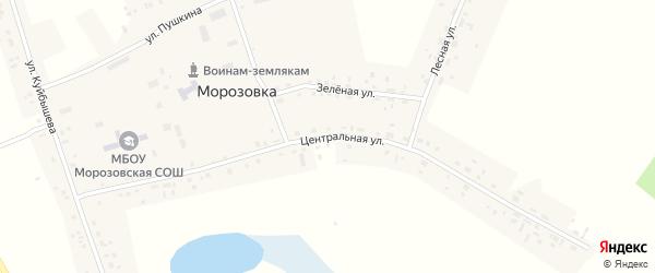 Центральная улица на карте села Морозовки Новосибирской области с номерами домов