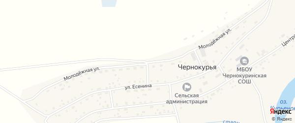 Молодежная улица на карте села Чернокурьи Новосибирской области с номерами домов