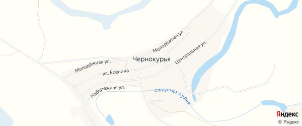 Карта села Чернокурьи в Новосибирской области с улицами и номерами домов