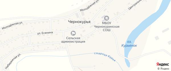 Центральная улица на карте села Чернокурьи Новосибирской области с номерами домов