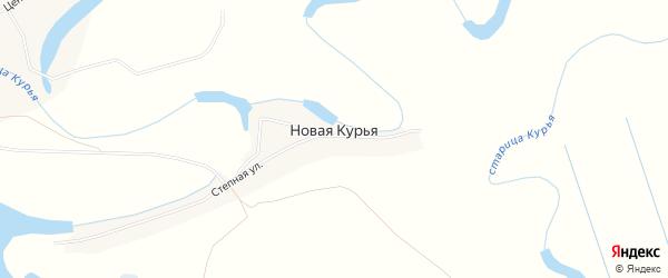 Карта Новой Курьи деревни в Новосибирской области с улицами и номерами домов