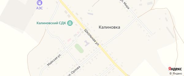 Школьная улица на карте села Калиновки Новосибирской области с номерами домов