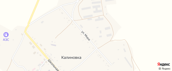 Улица Мира на карте села Калиновки Новосибирской области с номерами домов