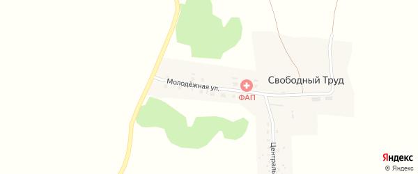 Молодежная улица на карте поселка Свободного Труда Новосибирской области с номерами домов