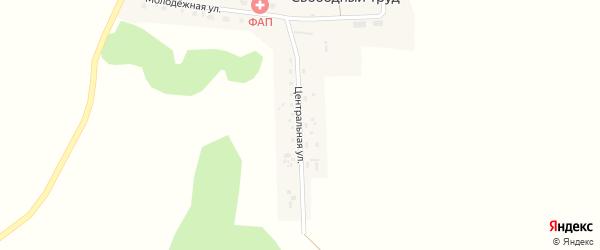 Центральная улица на карте поселка Свободного Труда Новосибирской области с номерами домов
