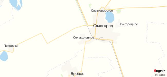 Селекционное на карте
