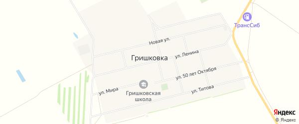 Карта села Гришковки в Алтайском крае с улицами и номерами домов