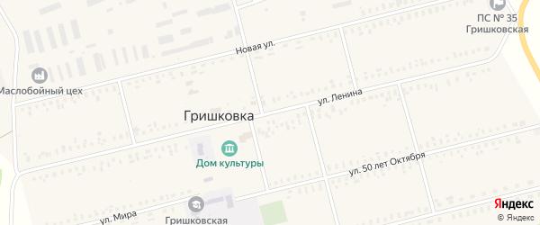 Улица Ленина на карте села Гришковки с номерами домов