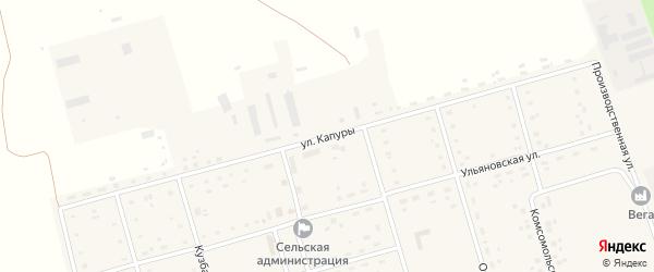 Улица Капуры на карте Алтайского села с номерами домов