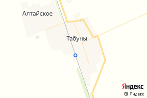 Карта с. Табуны Алтайский край